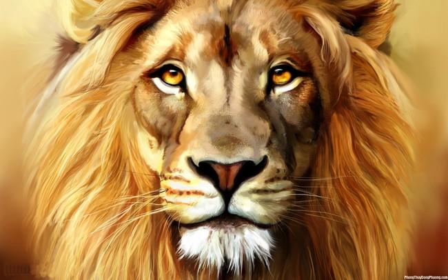 Thay vì sợ hãi, bé gái nhẹ nhàng vuốt ve chú sư tử và cái kết bất ngờ!