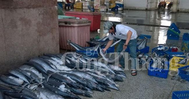 Bộ Công Thương hỗ trợ tiêu thụ thuỷ sản an toàn tại Huế