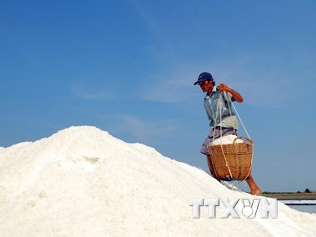"""Cà Mau: Diêm dân ngậm ngùi giữa mùa muối """"mặn"""" ở Tân Thuận"""