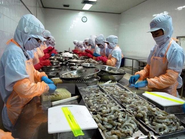 EU cảnh báo các cơ sở xuất khẩu thủy sản có chất kháng sinh cấm