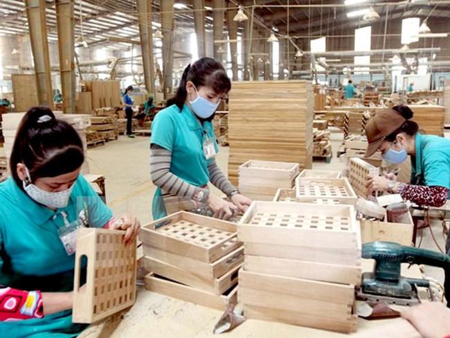 Vì sao xuất khẩu gỗ sụt giảm?