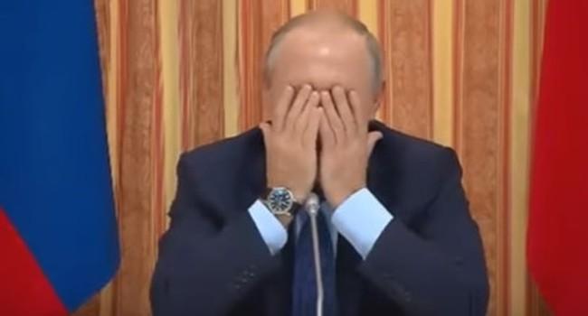 Tổng thống Putin che mặt cười khi cấp dưới nhắc tới xuất khẩu thịt lợn sang Indonesia