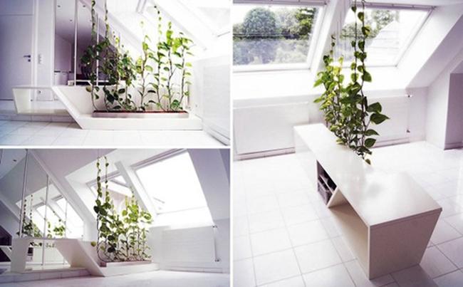 Phân chia phòng độc đáo nhờ vách ngăn xanh cho nhà ở hiện đại