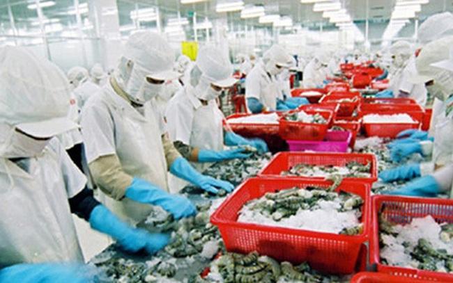Australia chấp nhận tôm chế biến tại Việt Nam sau đó tái nhập khẩu