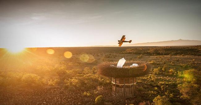 Mục sở thị phòng khách sạn tổ chim 5 sao đầu tiên trên thế giới