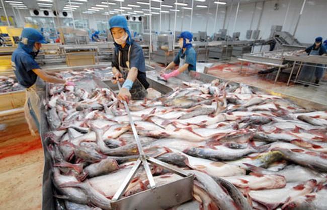 Mỹ tiếp tục áp thuế chống bán phá giá cá tra Việt Nam