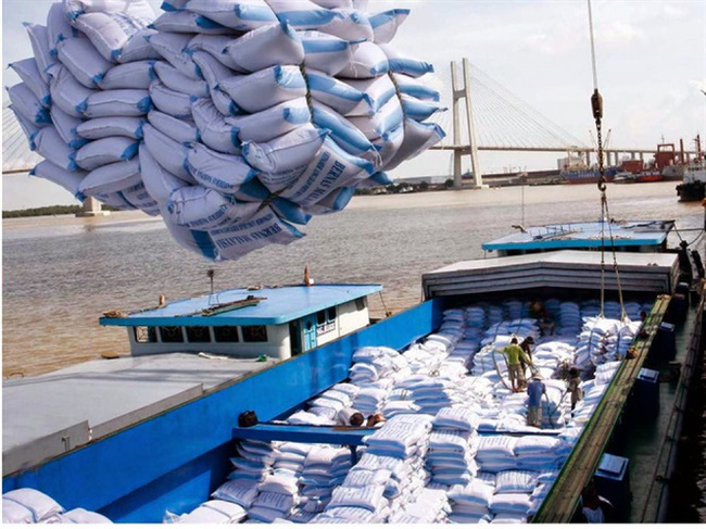 Gạo Việt Nam hút khách tại các thị trường trọng điểm