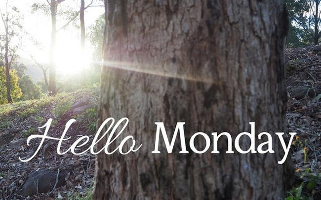8 điều đơn giản bạn có thể làm để không còn sợ ngày thứ Hai nữa