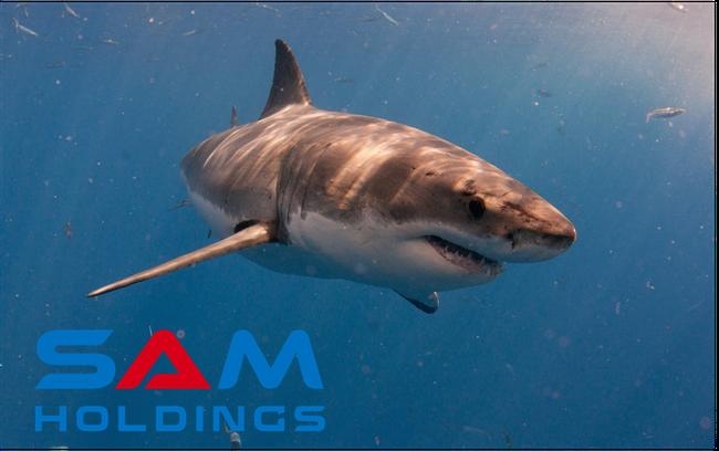 """SAM Holdings – cá mập tiềm lực mạnh nhất trong chương trình Shark Tank nhưng có kết quả kinh doanh khá """"yếu ớt"""""""