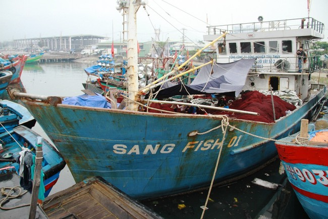 Phó Thủ tướng yêu cầu rà soát chất lượng tàu cá đóng theo Nghị định 67