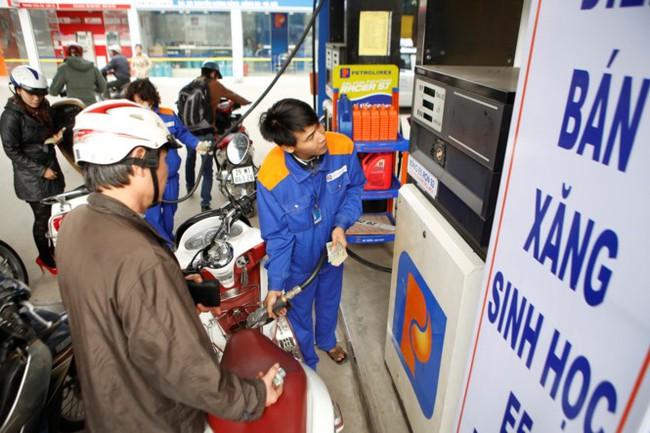 Nhiều doanh nghiệp xin tạm dừng bán xăng sinh học E5
