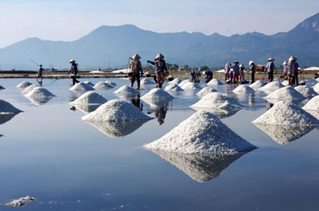 Sẽ siết hạn ngạch nhập khẩu muối