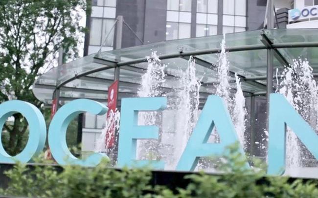 Ghế Tổng giám đốc của Ocean Group (OGC) đã có chủ sau hơn 3 tháng để trống