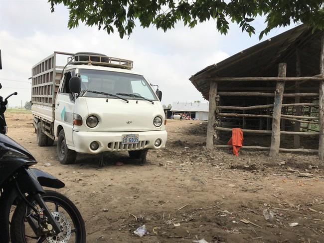 Thâm nhập đường dây buôn bò lậu từ Campuchia về nội địa