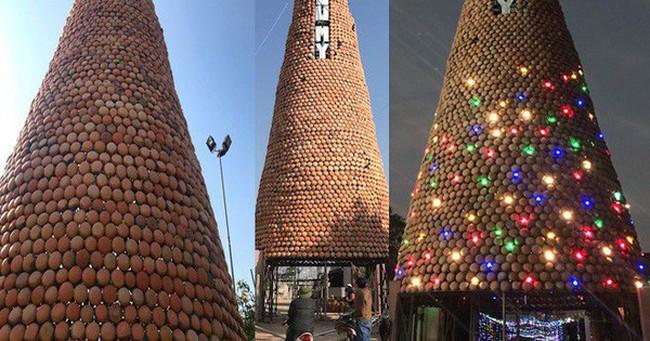 """Cận cảnh cây thông Noel cao 25m """"độc nhất vô nhị"""" ở Nghệ An"""