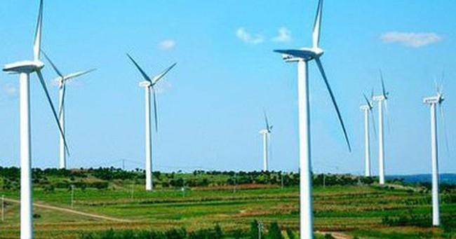 Australia dự kiến biên độ phá giá với tháp gió nhập khẩu từ Việt Nam khoảng 2,6%