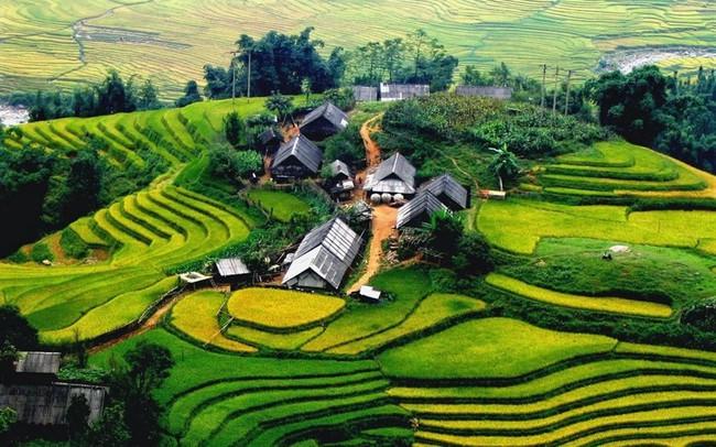 Đầu năm khách du lịch đến Việt Nam tăng vọt