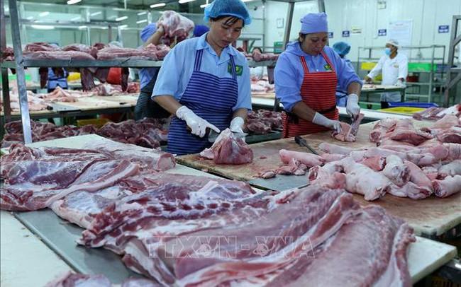 Thị trường cuối năm không lo thiếu thịt lợn