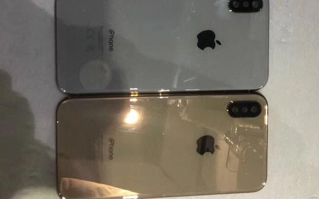 Lộ ảnh iPhone X màu vàng tuyệt đẹp, có thể ra mắt ngay trong năm nay