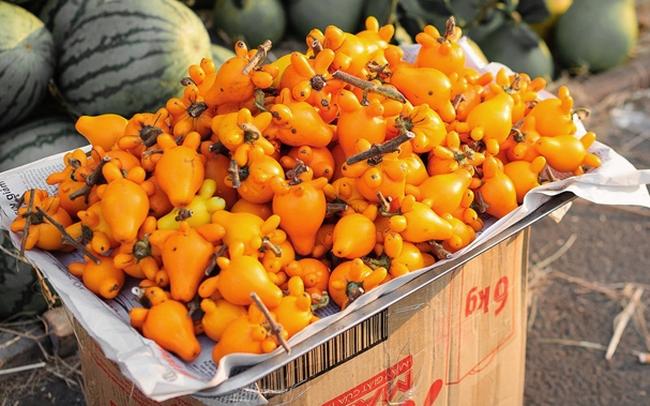 Quả dư: Loại trái cây bày mâm ngũ quả hot nhất Tết Mậu Tuất chứa chất độc chết người