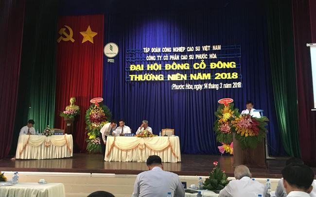 ĐHĐCĐ PHR: Vẫn đang phê duyệt bàn giao VSIP 3, 2018 sẽ mở rộng KCN Tân Bình thêm 1.055 ha