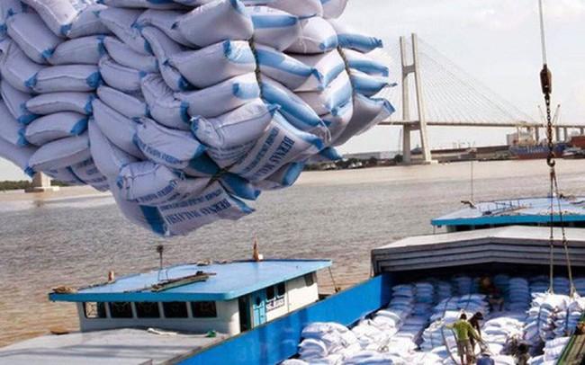 Xuất khẩu gạo khởi sắc: Vừa mừng vừa lo