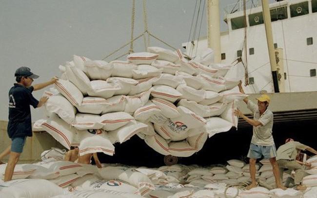 Xuất khẩu gạo: Lo ngại tình trạng ép giá khi vào chính vụ Đông Xuân