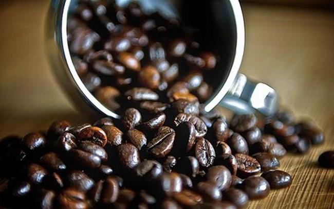 Giá cà phê tăng trở lại vào cuối tuần, lên 36 triệu đồng/tấn
