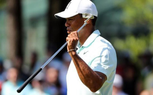 Tiger Woods vượt cắt Wells Fargo Championship sau 6 năm trở lại