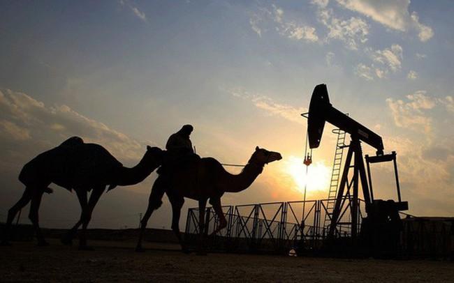Nội bộ OPEC mâu thuẫn trước thềm cuộc họp quan trọng