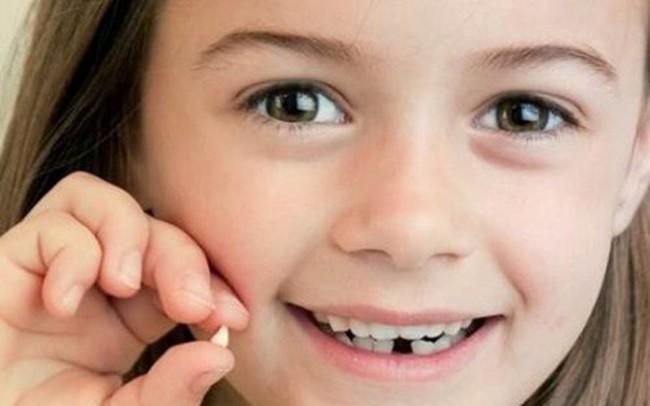 Đừng bao giờ vứt chiếc răng sữa của con đi vì nó sẽ cứu sống con bạn đấy!