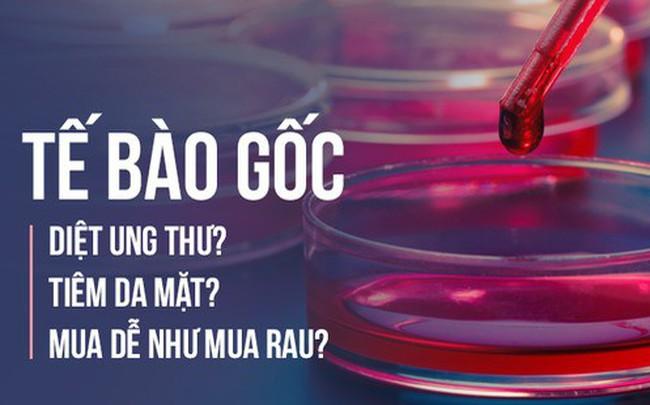 Ba tiến sĩ Việt ở nước ngoài: 9 ngộ nhận phổ biến về tế bào gốc