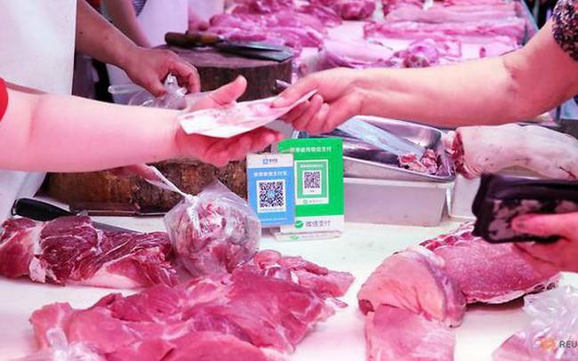Người nuôi lợn Trung Quốc điêu đứng vì dịch cúm hoành hành