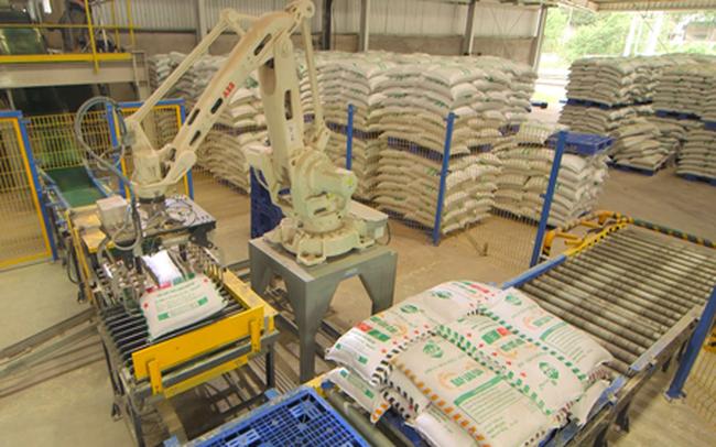 Cổ phiếu tăng mạnh, XNK Quảng Bình tiếp tục muốn thoái bớt vốn tại DAP Vinachem (DDV)