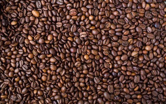 Giá cà phê thế giới tiêu cực, giá cà phê trong nước giảm xuống mức thấp nhất 30 tháng