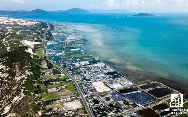 Bà Rịa - Vũng Tàu: Họp khẩn xử lý các dự án tự ý phân lô, bán nền
