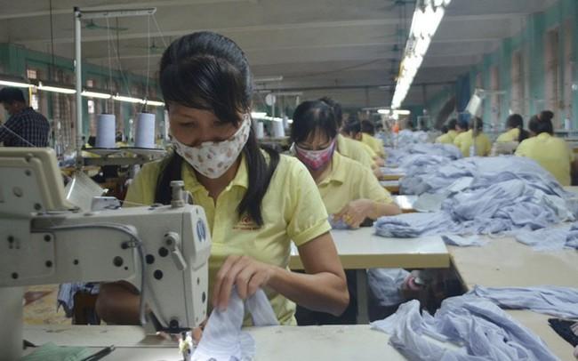 Hàng trăm doanh nghiệp nợ BHXH ở Quảng Ninh: Chuyển cơ quan pháp luật các trường hợp trốn đóng bảo hiểm