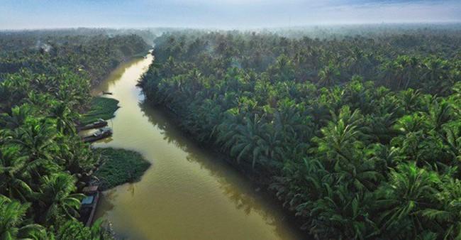 """Betrimex triển khai dự án """"10.000 ha vườn dừa organic cho nông dân"""""""