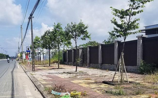 Vụ đền 5 tỉ ở Cà Mau: 'Ở nhà thuê, tiền đâu mà đền?'