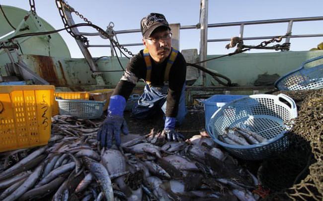 Ngay cả Nhật Bản cũng chật vật với xử lý ô nhiễm nước
