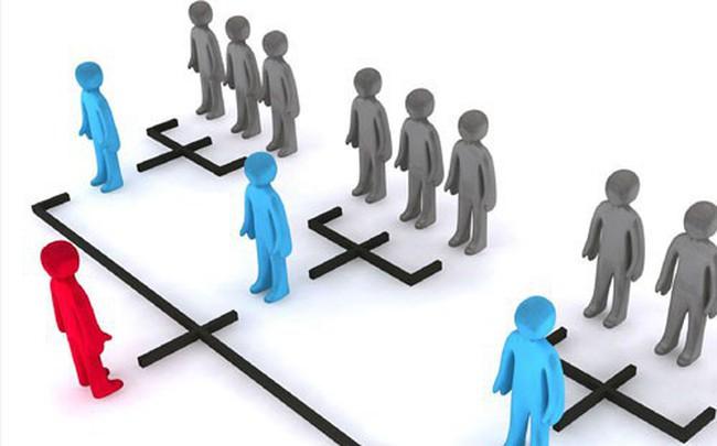 Bộ Công Thương khuyến cáo về hoạt động có dấu hiệu kinh doanh đa cấp không phép qua hệ thống greenleaf