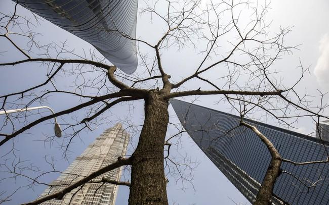 """Khủng hoảng đang """"nảy mầm"""" trong góc tăm tối nhất của hệ thống ngân hàng Trung Quốc"""