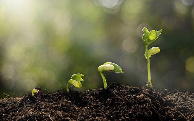 Không ai có thể trở thành phiên bản tốt nhất của mình trong một sớm một chiều: Cứ từ từ thay đổi, thà chậm mà chắc còn hơn nhanh mà sai đường!