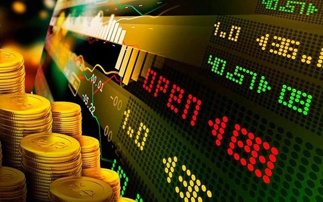 PNJ, GTN, HNG, CEE, DHC, NTT, T12, TVP, RCC, DCR: Thông tin giao dịch lượng lớn cổ phiếu