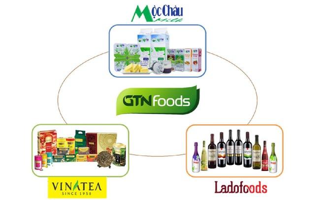 GTNfoods: Trình ĐHCĐ bất thường bổ sung ngành nghề kinh doanh, thoái vốn tái cấu trúc và đề xuất của cổ đông lớn Vinamilk