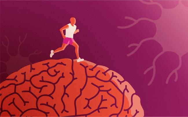 """5 mẹo nhỏ giúp bạn """"sạc pin"""" cho não bộ, kích thích tối đa hiệu suất công việc trong ngày: Làm đủ thì kết quả đáng kinh ngạc!"""