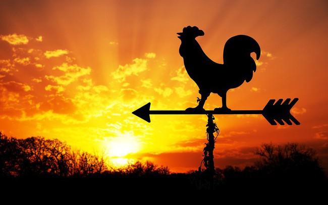 Nếu có thói quen dậy sớm, xin chúc mừng, phần thưởng dành cho bạn là điều bất kỳ ai cũng phải ước ao!