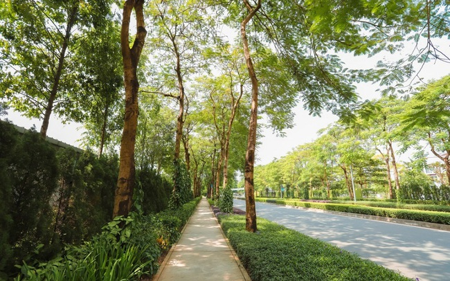 Giải mã sức hút tại The Zen Residence – Gamuda Gardens
