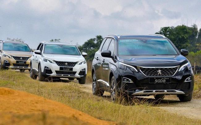 Tại sao ô tô nhập khẩu nguyên chiếc từ châu Âu về Việt Nam giảm về số lượng, đắt về giá cả?