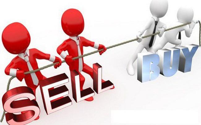 QNS, FTM, DIG, PVI, SSN, VC9, SDD, TSC: Thông tin giao dịch lượng lớn cổ phiếu